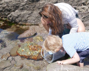 looking in rock pools
